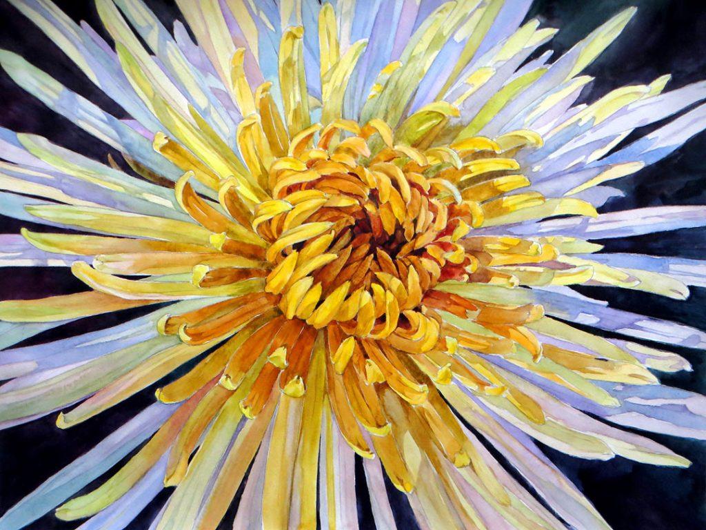 Chrysanthemum - 55 x 42 cm