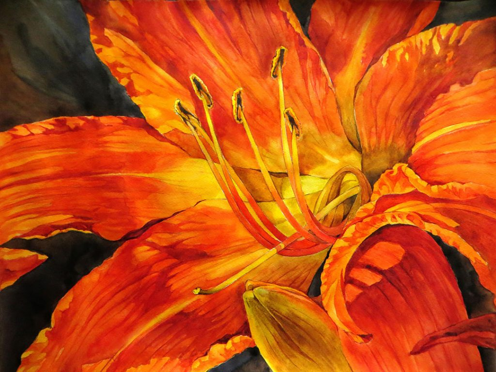 Lily - 55 x 42 cm