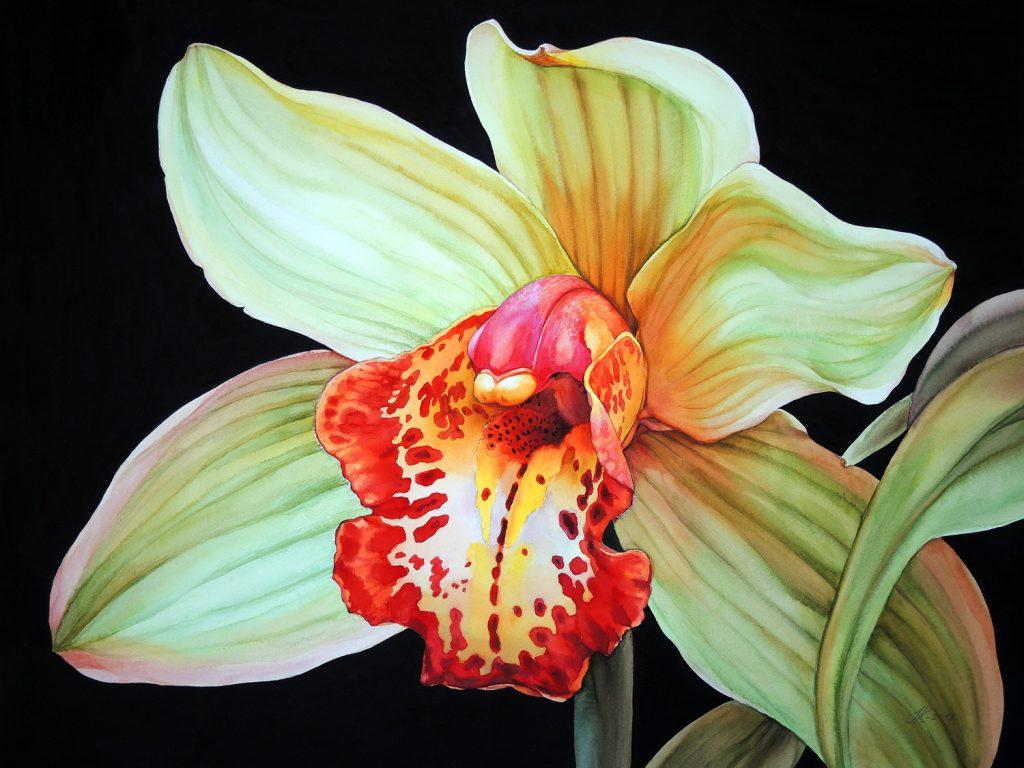 Orchid - 72 x 55 cm