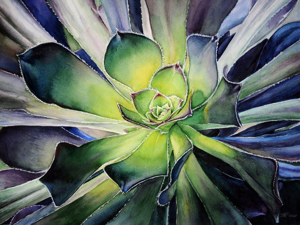 Succulent - 40 x 30 cm