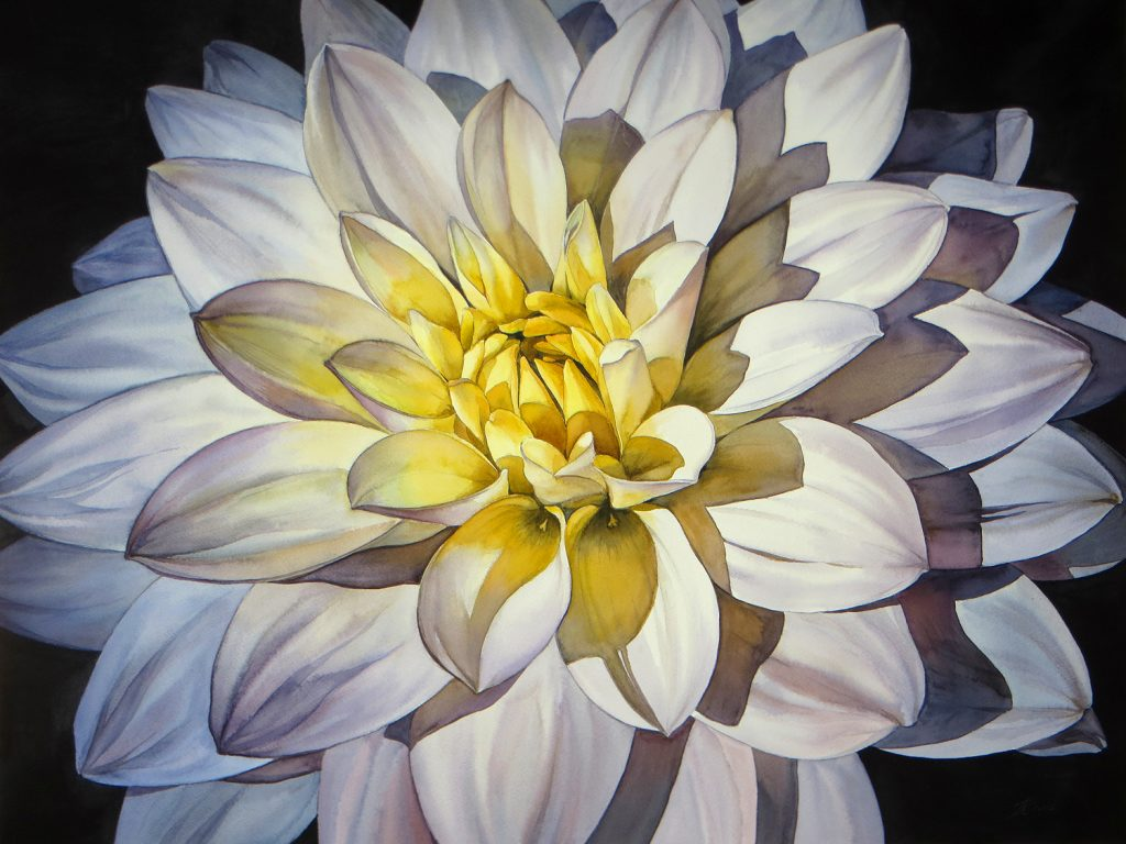 Yellow White Dahlia - 72 x 55 cm